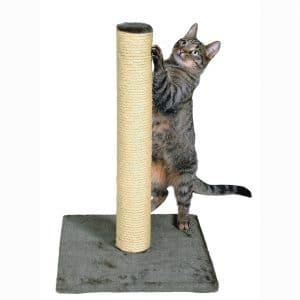 RIXIE Pet Products Parla Scratching Post