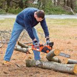 Best Electric Chainsaw